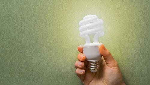 Person holding energy efficient lightbulb