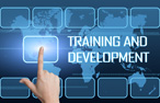 Training and development logo.