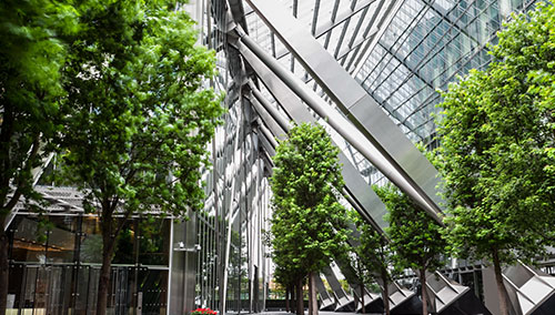 Healthy green trees line the interior glass walls of a modern office building.